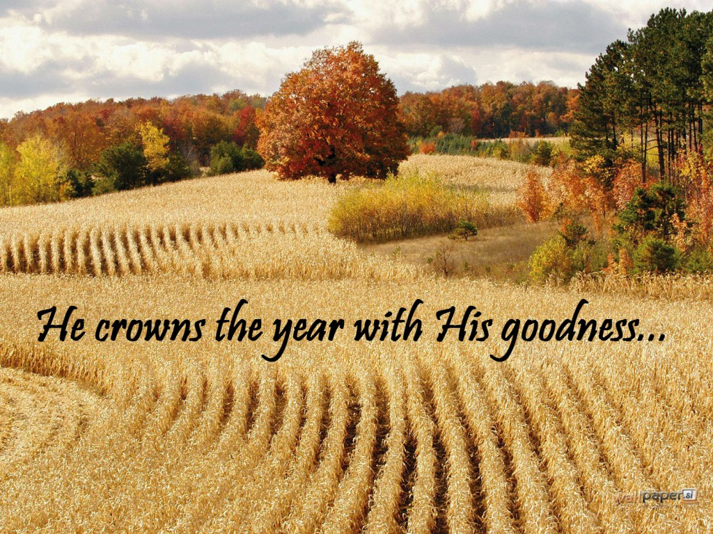 He Crowns the Year with His Goodness