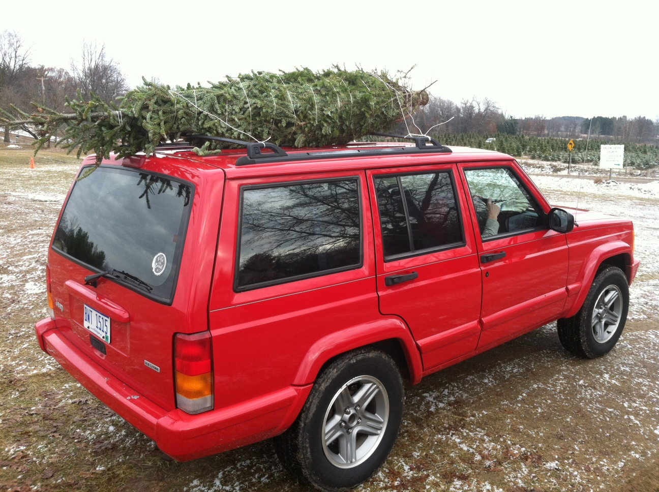 Christmas Tree Adventure 2011