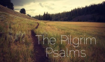 A Word for the Wounded (Psalm 129)