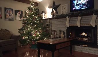 Christmas Tree Cutting 2015
